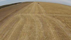 Cantidad aérea rápida de la máquina segador en el trabajo en prado metrajes