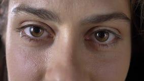 Cantidad cercana de los ojos de apertura y de mirar del marrón de la mujer hermosa joven la cámara almacen de video