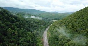 cantidad común aérea 4K de la conducción de automóviles a lo largo del camino del paso de montaña de la bobina a través del bosqu almacen de video