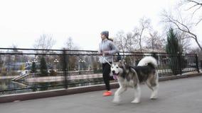 Cantidad de la chica joven que corre con su perro, malamute de Alaska almacen de video