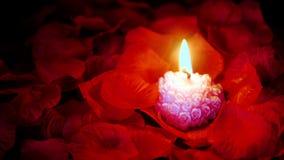 Cantidad de pétalos color de rosa con la vela rosada que quema para el día de San Valentín metrajes