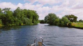 Cantidad del barco de los árboles y de las cañas que soplan en un día ventoso almacen de metraje de vídeo