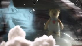 Cantidad del hd de la nieve de la ventanilla del coche del oso de las lanas almacen de metraje de vídeo