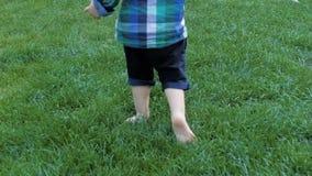 Cantidad del primer de la cámara lenta de los pies adorables del niño pequeño que corren en hierba verde fresca en el parque almacen de video