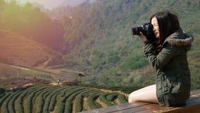 cantidad 4K de la mujer turística asiática feliz que toma la foto de la naturaleza hermosa de la plantación del campo del té en A metrajes