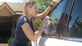cantidad 4k de los espejos de limpieza y de las ventanas del conductor femenino joven en su coche con el paño de la microfibra almacen de metraje de vídeo