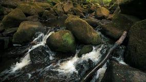 cantidad 4K de un peque?o watefall de la corriente del bosque sobre rocas cubiertas de musgo en el distrito m?ximo, Reino Unido almacen de metraje de vídeo
