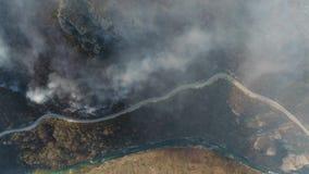 Cantidad vertical aérea del bosque cubierto en humo grueso, con un camino y un río cerca cerca metrajes