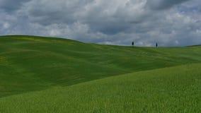 Cantidad video del lapso de tiempo de Toscana con las nubes y los campos verdes