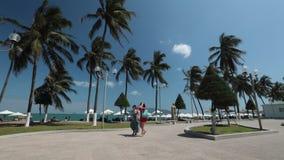 Cantidad Vietnam de la definición del centro turístico de la costa costa alta almacen de metraje de vídeo