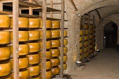 Cantina con formaggio Fotografia Stock Libera da Diritti