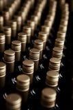 Cantina delle bottiglie di vino Immagine Stock Libera da Diritti