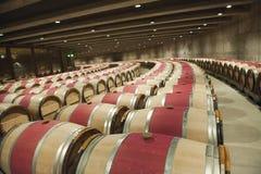 Cantina per vini molto moderna dell'opera una, valle di Nappa Fotografie Stock Libere da Diritti