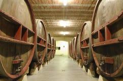 Cantina per vini nella prospettiva Fotografie Stock Libere da Diritti