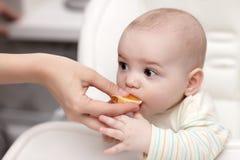 cantle μωρών που τρώει το πορτοκάλι στοκ εικόνα με δικαίωμα ελεύθερης χρήσης