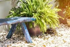 Canto bonito do jardim pequeno, jardinagem da decoração Fotos de Stock