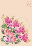 Canto cor-de-rosa da cor-de-rosa Fotografia de Stock Royalty Free
