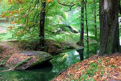 Canto da floresta do outono com um rio pequeno e as pedras Imagem de Stock Royalty Free