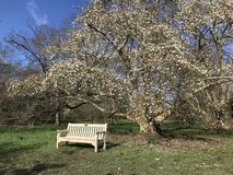 Canto de jardins de Kew imagens de stock