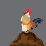Canto del gallo del pollo Immagine Stock Libera da Diritti