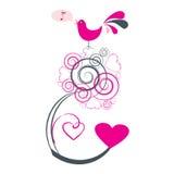 Canto dell'uccello di amore Fotografie Stock