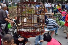 CANTON, CHINA - CIRCA MARCH 2018: Bird´s market in the city park. CANTON, CHINA - CIRCA MARCH 2018: A wooden bird´s cage hangs in the park where people get Stock Photo