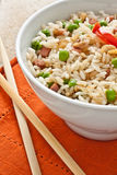 Canton chinese rice Stock Images