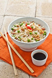 Canton chinese rice Royalty Free Stock Images