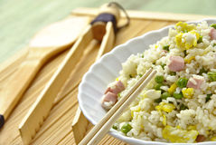Cantonese rice Stock Image