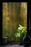 cantonesehus Royaltyfri Fotografi