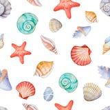 Cantos da aquarela do quadro com shell do mar Fotos de Stock