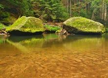 Cantos rodados cubiertos de musgo de la piedra arenisca en el agua del río de la montaña. Fotos de archivo libres de regalías