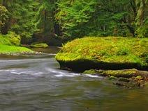 Cantos rodados cubiertos de musgo de la piedra arenisca en el agua del río de la montaña. Despeje el agua borrosa con reflexiones. Imagen de archivo libre de regalías