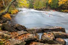 Cantos rodados enormes y bosque colorido de la caída en una orilla Fotos de archivo libres de regalías