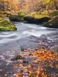 Cantos rodados grandes con las hojas caidas Orillas del río de la montaña del otoño Grava y cantos rodados cubiertos de musgo ver Imagen de archivo libre de regalías