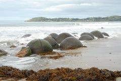 Cantos rodados y quelpo, Otago, Nueva Zelandia de Moeraki Foto de archivo