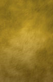 Canvas Background Green/Yellow Royalty Free Stock Images