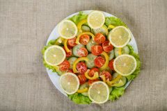 On a canvas background there are plates with a prepared salad made of cucumber, tomato and lemon. View from above Royalty Free Stock Photo