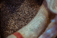 Canvas bag of raw coffee beans. Closeup photo of canvas bag full of raw coffee beans Royalty Free Stock Images