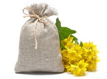 Canvas bag with yellow flowers. On a white background royalty free stock photography