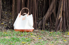 Canvas Bags with Banyan Tree Stock Photo