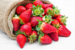 Canvas sack full of  red strawberry Stock Images