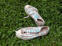 Canvas shoes. Sneakers in grasses Royalty Free Stock Images
