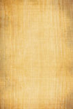 Canvas texture. Aged and weathered canvas brown texture royalty free illustration