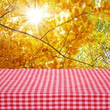 Canvas texture or background on table.  Autumn Landscape Stock Images