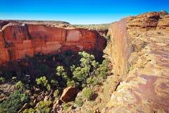 Canyon国王 图库摄影