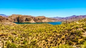 Canyon湖和Tonto国家森林沙漠风景  库存照片