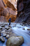 Canyon. Woman hiking in the Narrows, Zion National Park Royalty Free Stock Photo
