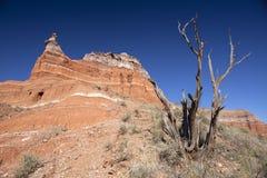 Canyon. Stock Image