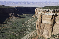 Canyon. In the Colorado National Monument Royalty Free Stock Images
